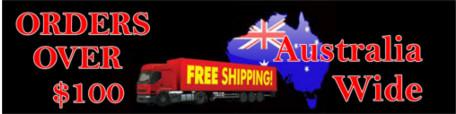 Free Ship $100